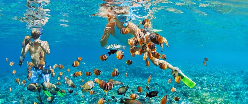 Snorkelling in the Bahamas