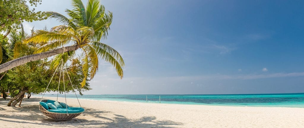 Caribbean beach with palm tree swing