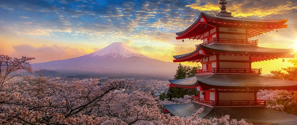 Cherry blossoming with Mount Fuji in the background